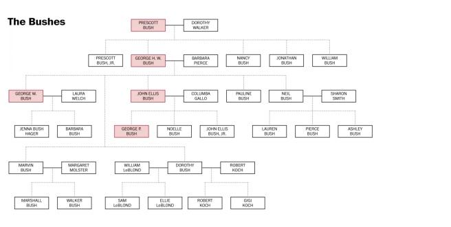 Arbre généalogique de la famille Bush (Source: Washington Post)